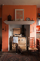 A chocolate Labrador poses infront of the Aga in this orange painted kitchen