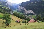 Cog railway leading to the Eiger, Lauterbrunnen, Switzerland.