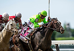 JUNE 08: Hog Creek Hustle with Corey Lanerie defeats Nitrous and Ricrdo Santana to win the Woody Stevens Stakes at Belmont Park in Elmont, New York on June 07, 2019. Evers/Eclipse Sportswire/CSM