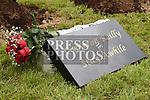 A plaque in memory of Cameron Reilly. Photo:Colin Bell/pressphotos.ie