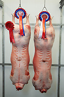 Overall champion lambs from this year East of England Winter Stock Festival where bought by Billy Burton on behalf of Stilton Catering Butchers based in Peterborough. The Beltex X lambs weighing 42.5 KG live and exhibited by Robert Garth & Sarah Priestley of Bentham, North Yorkshire weighed 22kg dead and will be supplied to the Bell Inn at Stilton, Peterborough by Stilton Catering Butchers.<br /> ©Tim Scrivener Photographer 07850 303986<br />      ....Covering Agriculture In The UK....