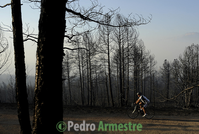 A cyclists rides past burned trees in the Aliaga road, near Teruel, on July 24, 2009 after a wildfire burned out of control in the area. Deadly summer wild fires spread across Spain, France, Italy and Greece on Friday with holidaymakers rescued from beaches and thousands of firefighters brought into the battle. on July 24, 2009. (C) Pedro ARMESTRE