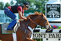 BELMONT 6-3-12 I'LL HAVE ANOTHER W/ JONNY GARCIA GALLOPS OVER THE MAIN TRACK. © NANCY ROKOS 2012