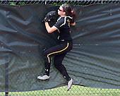Caledonia vs Farmington Hills Mercy at MSU, Varsity Softball, 6/11/15