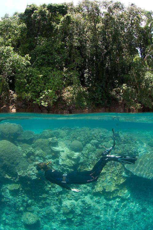 Split level shot of snorkellers at Restorf Island, Kimbe Bay