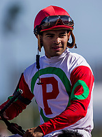 HALLANDALE BEACH, FL - JANUARY 27: Luis Saez at Gulfstream Park Race Track on January 27, 2018 in Hallandale Beach, Florida. (Photo by Alex Evers/Eclipse Sportswire/Getty Images)