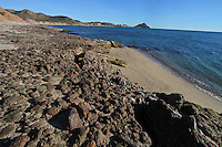 Coastal desert and the sea area of Kino Bay in the Sea named Sea of Cortez, Sonora, Mexico..Desierto costero y la zona marítima de la Bahía de Kino, en el Mar llamado Mar Cortez,Sonora, México..*Monday*06*/feb/201*.***photo:staff/NortePhoto**.*No*sale*to*third*