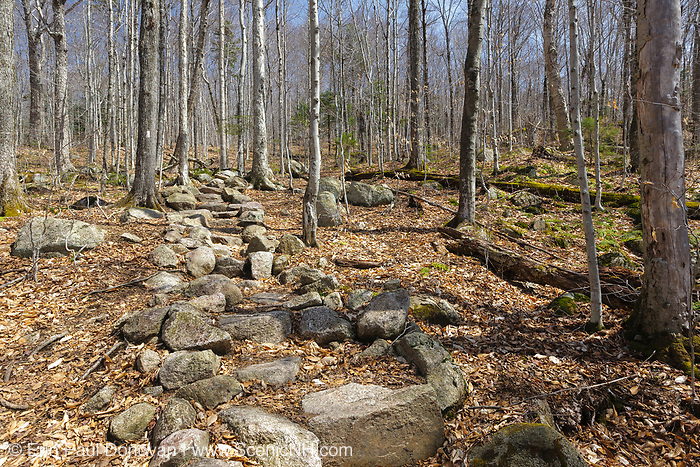 Rock steps along the Appalachian Trail (Liberty Spring Trail) in the White Mountains, New Hampshire. Trail Maintenance handbook guidelines state the best trails show little evidence of work and that trail work should blend in with the surroundings. This is an excellent example of stonework that blends in with the forest and looks natural.