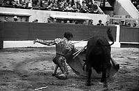 Corrida aux Arènes du Soleil d'Or (quartier des Arènes). 8 mai 1966. Scène de tauromachie. Au 1er plan El Cordobés effectue une passe de cape avec le taureau,