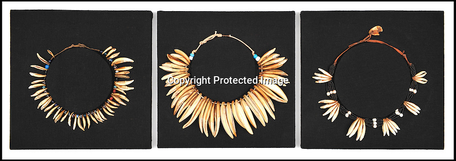 BNPS.co.uk (01202 558833)<br /> Pic: Wallis&amp;Wallis/BNPS<br /> <br /> ***Please use full byline***<br /> <br /> left - a 19th century Zulu status necklace made from jackal's teeth<br /> <br /> centre - a 19th century Zulu status necklace made from lion's teeth valued at &pound;2,000<br /> <br /> right - a 19th century Zulu status necklace made from jackal's teeth.<br /> <br /> A collection of items used to slaughter British troops at the famous battle of Isandlwana in the Anglo-Zulu war has emerged for sale.<br /> <br /> The collection was amassed by David Smith, a former Royal Marine Commando from Beckenham in Kent, who had an interest in the culture of the Zulu people.<br /> <br /> There are over 150 items for sale including a club thought to be used by an executioner, worth &pound;300, and a necklace made from lion's teeth worth &pound;2,000.<br /> <br /> Mr Smith suddenly died aged 65 in 2009 and the items are being sold by his partner, Roberta Welham.<br /> <br /> The whole collection could fetch &pound;100,000 in total.