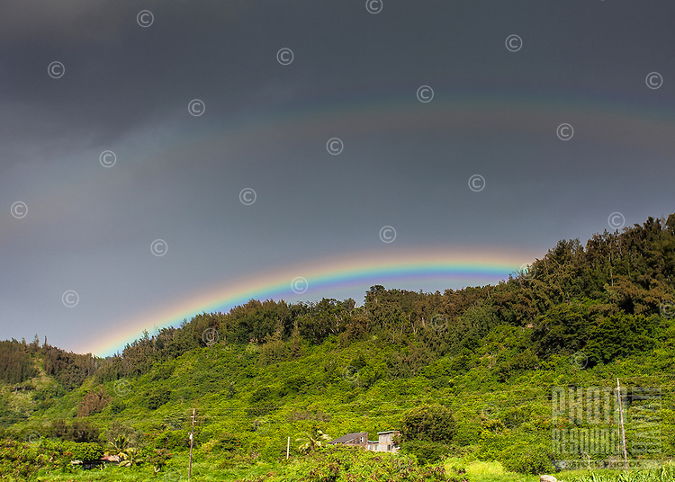 A double rainbow over green trees on Pupukea hill, North Shore, O'ahu