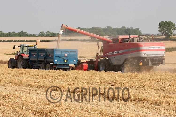 Harvesting Winter Barley in Rutland