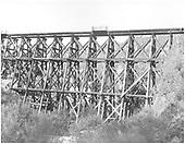 Elk Creek trestle.<br /> Lake City Branch - Elk Creek, CO  Taken by Houston, Grant