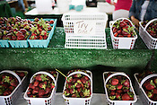 May 16, 2008. Raleigh, NC..Strawberries at the State Farmer's Market in Raleigh.