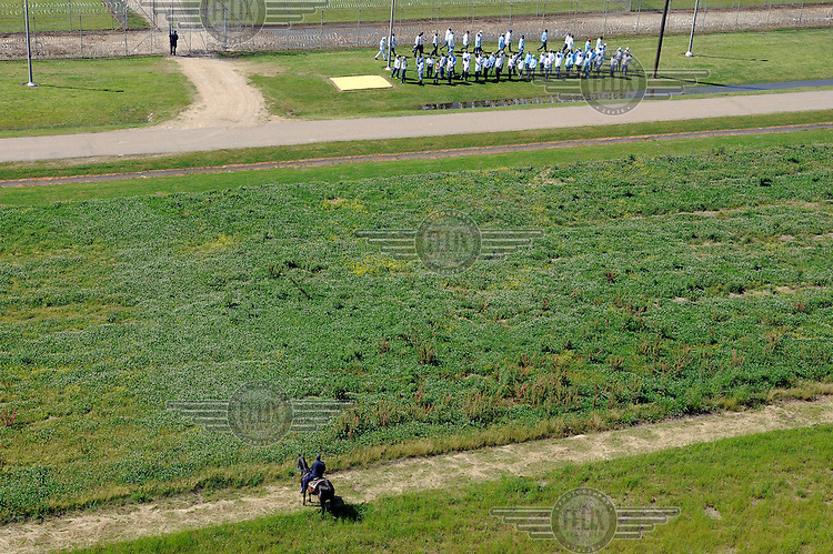 Prisoners form a line at Angola Prison. They are watched by an armed prison guard on horse back..