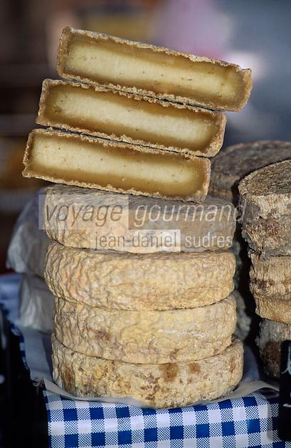France/Corse/Corse-du-Sud/2A/Ajaccio: Le marché - Fromage de brebis: le Bastélicaccia