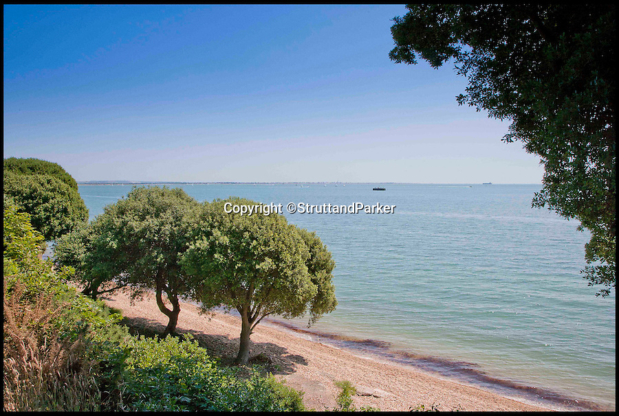BNPS.co.uk (01202 558833)<br /> Pic: StruttandParker/BNPS<br /> <br /> ***Please Use Full Byline***<br /> <br /> FYI: Views if the sea from the Eaglehurst estate. <br /> <br /> <br /> A grand country estate which almost became Queen Victoria's summer house has gone on the market for a whopping 6.5 million pounds.<br /> <br /> The monarch fell in love with the enormous Eaglehurst estate when she stayed there as a 14-year-old in 1833.<br /> <br /> Four years later Victoria ascended the throne and, wanting somewhere to which she and her beloved husband Albert could retreat from the pressures of court life, began searching for a holiday residence. <br /> <br /> Her first thought was Eaglehurst. Albert was taken with the unbeatable views of the Solent, which he likened to the Bay of Naples, but the pair eventually settled on Osborne House almost directly opposite Eaglehurst on the Isle of Wight.<br /> <br /> The 10-acre estate dates back to the early 1800s when it was built by General Richard Lambart, a Napoleonic era military commander who was the governor of nearby Calshot Castle.<br /> <br /> Eaglehurst is now on the market with Strutt and Parker for 6.5 million pounds.