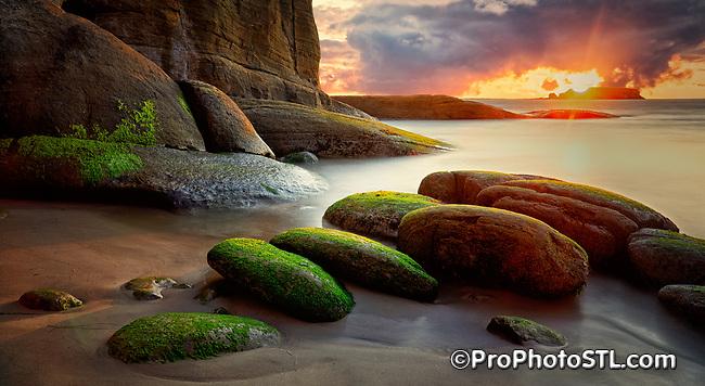 Green algae on the rocks at Devil's Punchbowl in Otter Rock, Oregon at sunset