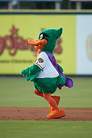 "Down East Wood Ducks mascot ""DEWD"" runs the bases between innings of the Carolina League game against the Winston-Salem Dash at Grainger Stadium Field on May 17, 2019 in Kinston, North Carolina. The Dash defeated the Wood Ducks 8-2. (Brian Westerholt/Four Seam Images)"