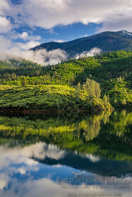 Whiskeytown Lake, Whiskeytown National Recreation Area, Shasta - Trinity National Forest, Shasta County, California
