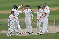 Essex players celebrate taking the wicket of Steven Patterson during Essex CCC vs Yorkshire CCC, Specsavers County Championship Division 1 Cricket at The Cloudfm County Ground on 9th July 2019