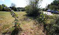 NWA Democrat-Gazette/DAVID GOTTSCHALK  A 4.8 acre lot located at 1954 S. School Avenue is visible Monday, October 9, 2017, in Fayetteville. a nonprofit ServeNWA wants to build temporary emergency shelters on the property. The nonprofit is in talk with the current owner of the property, the University of Arkansas, to buy the property.