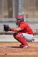 St. Louis Cardinals catcher Jose Godoy (88) during a Minor League Spring Training Intrasquad game on March 28, 2019 at the Roger Dean Stadium Complex in Jupiter, Florida.  (Mike Janes/Four Seam Images)