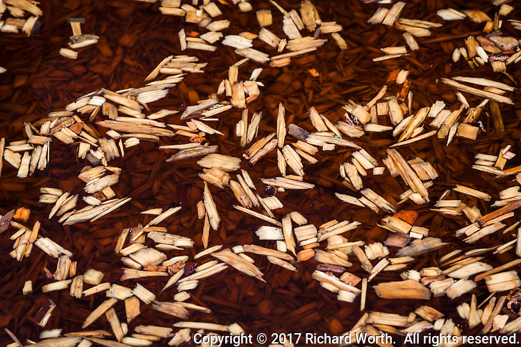 Woodchips in a playground innundated by rain - some float above those that don't, creating an enchanting abstract.