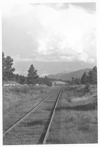 Westbound view along the MT/CM track.<br /> Midland Terminal  Divide, CO
