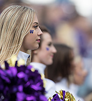 Husky cheerleaders stand at attention.