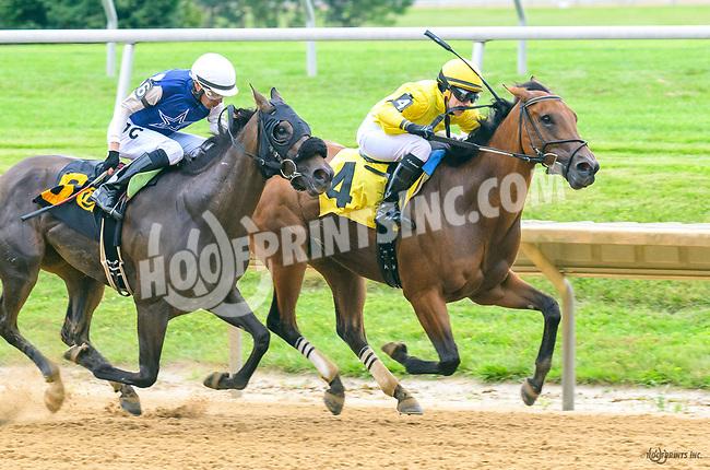 Pistol Posse winning at Delaware Park on 7/1/17