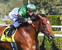 08-19-17 Lake Placid Stakes (II) (Saratoga)