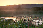 Sunrise at the Arcata Marsh, Arcata, Humboldt County, CALIFORNIA