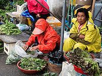 Gemüse auf dem Markt in Gurye, Provinz Jeollanam-do, Südkorea, Asien<br /> vegetables on market iin Gurye, province Jeollanam-do, South Korea, Asia