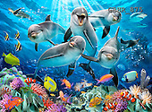 Howard, REALISTIC ANIMALS, REALISTISCHE TIERE, ANIMALES REALISTICOS, paintings,+dolphins,++++,GBHR875,#A# ,puzzles
