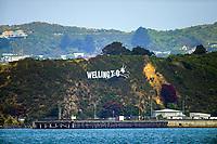 Burnham Wharf in Wellington, New Zealand on Friday, 3 January 2020. Photo: Dave Lintott / lintottphoto.co.nz