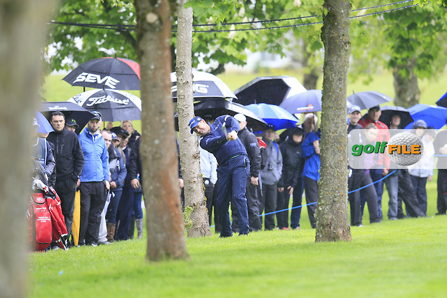 Padraig Harrington (IRL) plays his 2nd shot from the trees on the 17th hole during Thursday's Round 1 of the 2016 Dubai Duty Free Irish Open hosted by Rory Foundation held at the K Club, Straffan, Co.Kildare, Ireland. 19th May 2016.<br /> Picture: Eoin Clarke | Golffile<br /> <br /> <br /> All photos usage must carry mandatory copyright credit (&copy; Golffile | Eoin Clarke)