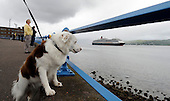 Watched by Kai, a cross border collie, Cunard's Queen Victoria sails up the Clyde on its first ever port of call in Scotland, when it arrived at Greenock today (Wed). The 90,000 tonne vessel docked at The Ocean Terminal on Wednesday, part of an eleven day UK wide tour the luxury liner will make on its maiden voyage. It will take in Dublin, Belfast, Cobh and Liverpool, among other ports, on its way - Picture by Donald MacLeod 28.07.10 - mobile 07702 319 738 - clanmacleod@btinternet.com