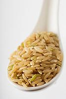 : France, Bouches-du-Rhône (13), Camargue, Riz Bio  de Camargue Long Complet France, Bouches du Rhone, Camargue, Camargue rice Organic Long complete