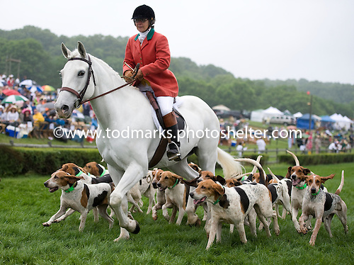 The Longreen Foxhounds do their thing.