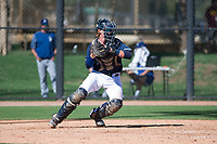 San Diego Padres catcher Blake Hunt (12) during an Instructional League game against the Los Angeles Dodgers at Camelback Ranch on September 25, 2018 in Glendale, Arizona. (Zachary Lucy/Four Seam Images)