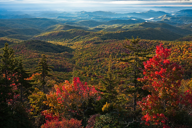 Autumn vista as viewed from Beacon Heights, Blue Ridge Parkway