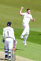 PICTURE BY ALEX WHITEHEAD/SWPIX.COM - Cricket - LV County Championship Match, Day 1 - Yorkshire vs Derbyshire - Headingley, Leeds, England - 29/04/13 - Yorkshire's Tim Bresnan celebrates the wicket of Derbyshire's Billy Godleman.