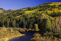 White River and  Aspen trees in fall colors, Flat Tops Wilderness, Colorado, USA, September 2007