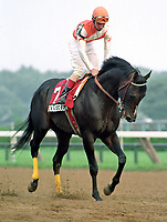 Horse racing; racehorse; Thoroughbred; racetrack, Housebuster, Craig Perret, sprinter, champion, Saratoga Race Course