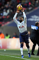 during Tottenham Hotspur vs Newcastle United, Premier League Football at Wembley Stadium on 2nd February 2019