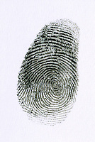 FINGERPRINT<br /> Whorl<br /> A fingerprint is an imprint made by the pattern of ridges on the pad of a human finger. No two humans have ever been found to have identical fingerprints. The five most commonly used are: whorl, right loop, left loop, arch and tented arch.