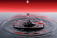 Drop falling into blue / black water with red background