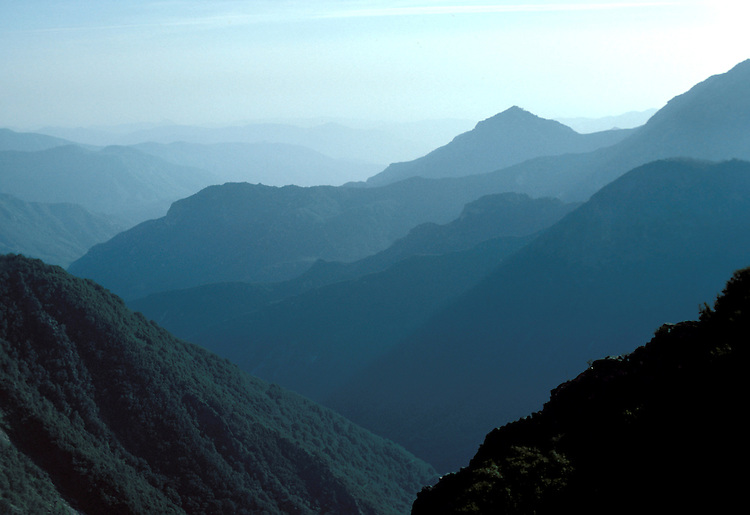 CA: Sequoia-Kings Canyon National Park, View of Sierras, misty, layered mountains      .Photo Copyright: Lee Foster, lee@fostertravel.com, www.fostertravel.com, (510) 549-2202.Image: catree215