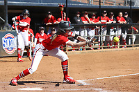 GREENSBORO, NC - FEBRUARY 22: Madison Robicheau #12 of Fairfield University lays down a bunt during a game between Fairfield and North Carolina at UNCG Softball Stadium on February 22, 2020 in Greensboro, North Carolina.